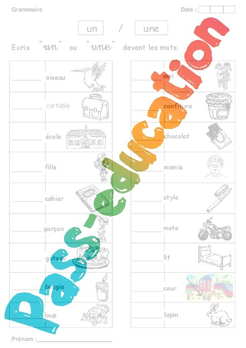 Un ou une exercices grammaire 1ere primaire pass education - Un ou une petale ...