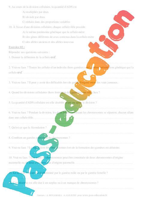 Transmission de l'information génétique - Exercices ...
