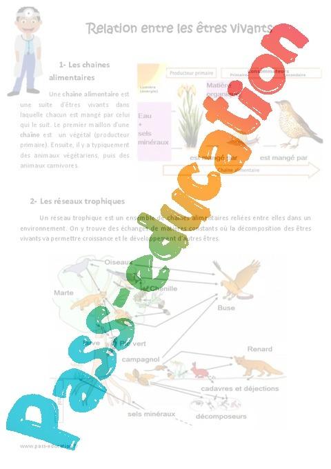 Fabuleux Relation entre les êtres vivants - Exercices : 4eme, 5eme Primaire  PQ01
