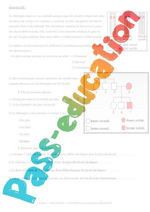 Information génétique - Exercices corrigés - Remédiation ...