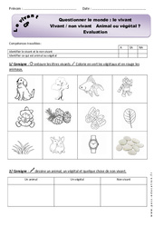 Le vivant - Examen Evaluation : 1ere Primaire