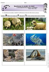Naissance - Exercices - Séance 1 - Développement des animaux - Fiches élève : 1ere Primaire