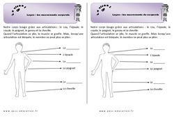 Mouvements corporels - Cours, Leçon