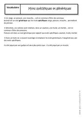Mots spécifiques et génériques - Cours : 1ere Secondaire