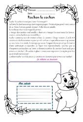 Rochon cochon - 1 histoire 1 problème : 4eme Primaire