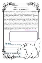 Didier le fourmilier - 1 histoire 1 problème : 5eme Primaire