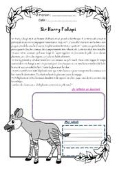 Sir Harry l'okapi - 1 histoire 1 problème : 5eme Primaire