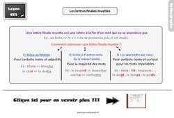 Leçon, trace écrite sur les lettres finales muettes : 3eme Primaire