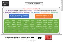 Leçon, trace écrite sur les mots invariables : 3eme Primaire