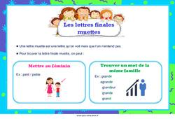 Les lettres finales muettes - Affiche : 2eme, 3eme, 4eme, 5eme Primaire