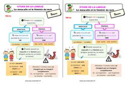 Le masculin et le féminin du nom - Étude de la langue - Cours, Leçon : 2eme Primaire