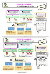 Le singulier, pluriel du nom - Étude de la langue - Cours, Leçon : 2eme Primaire