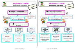 Le féminin des noms - Étude de la langue - Cours, Leçon : 3eme Primaire