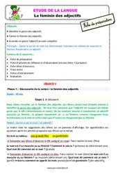 Le féminin des adjectifs - Étude de la langue - Fiche de préparation : 3eme Primaire