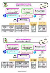 Le féminin des adjectifs - Étude de la langue - Cours, Leçon : 3eme Primaire