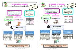 Le féminin des adjectifs - Étude de la langue - Cours, Leçon : 2eme Primaire