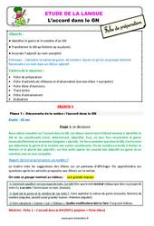 L'accord dans le GN au  - Étude de la langue - Fiche de préparation : 3eme Primaire