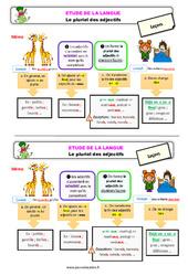 Le pluriel des adjectifs au  - Étude de la langue - Cours, Leçon : 3eme Primaire