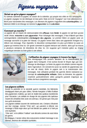 Les pigeons voyageurs - Lecture documentaire : 2eme, 3eme, 4eme Primaire