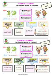 Le singulier, pluriel de l'adjectif - Étude de la langue - Cours, Leçon : 2eme Primaire