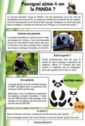 Les pandas - Lecture thématique : 2eme, 3eme, 4eme Primaire
