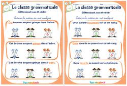 Déterminant, nom et verbe - Rituels - La classe grammaticale : 2eme, 3eme Primaire