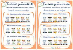 Déterminant, nom, adjectif qualificatif, verbe et pronom personnel - Rituels - La classe grammaticale : 2eme, 3eme Primaire