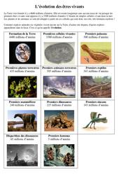Evolution des premiers êtres vivants - Exercices - Sciences : 5eme Primaire