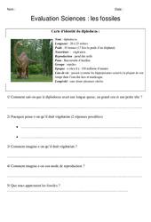 Fossiles - Examen Evaluation : 5eme Primaire