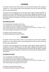 Fossiles - Cours, Leçon - Sciences : 5eme Primaire