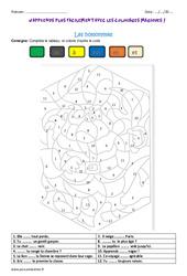 Homonymes - Coloriage magique : 3eme Primaire