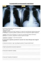Je comprends Les mouvements respiratoires - Exercices - Sciences : 4eme, 5eme Primaire