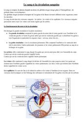 Le sang et la circulation sanguine - Cours, Leçon - Sciences : 5eme Primaire