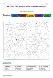 Champs lexicaux - Coloriage magique : 3eme Primaire