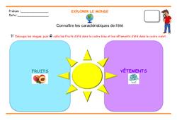 Connaître les caractéristiques de l'été - Séances : 3eme Maternelle - Cycle Fondamental