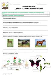 Reproduction des êtres vivants - Examen Evaluation : 4eme, 5eme Primaire