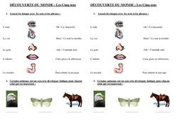 5 sens - Examen Evaluation : 2eme Primaire