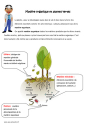 Matière organique et plantes vertes - Exercices : 4eme, 5eme Primaire