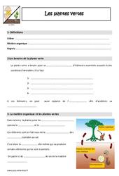 Plantes vertes - Cours, Leçon : 4eme, 5eme Primaire