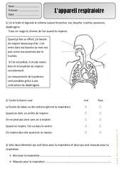 Appareil respiratoire - Respiration - Exercices - Découverte du monde : 2eme Primaire