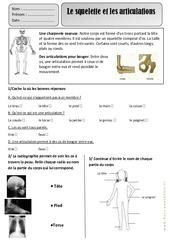 Squelette - Articulations - Corps Humain - Exercices - Découverte du monde : 2eme Primaire