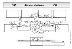 Arbre généalogique - Générations - Exercices - Espace temps : 2eme Primaire
