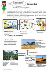Ecosystème - Exercices : 4eme, 5eme Primaire
