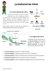Biodiversité des rivières - Exercices : 4eme, 5eme Primaire