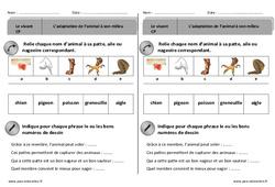 Adaptation des animaux à leur milieu - Exercices - Découverte du monde : 1ere Primaire