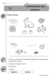 Alimentation des animaux - Exercices - Découverte du monde : 1ere Primaire