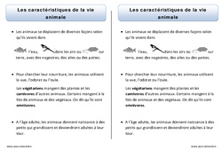 Caractéristiques de la vie animale - Trace écrite - Découverte du monde - Cours, Leçon : 1ere Primaire