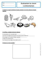 Alimentation - Examen Evaluation : 1ere Primaire
