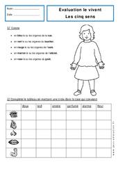 5 sens - Examen Evaluation : 1ere Primaire