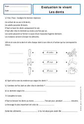 Dents - Examen Evaluation : 1ere Primaire
